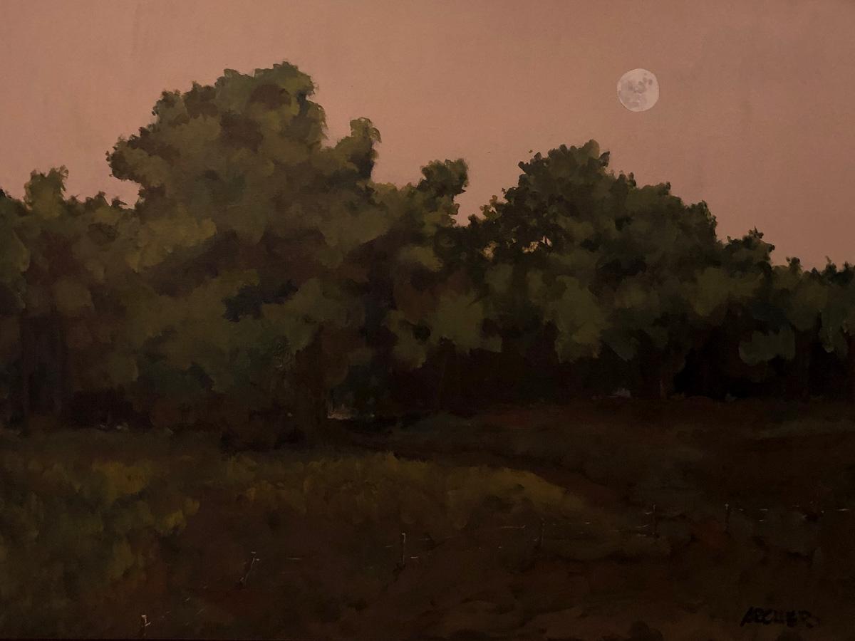 Moonlit Field by John Archer
