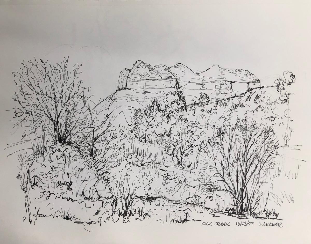 Oak Creek View by John Archer